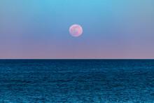 Super Pink Flower Moon Rising Above The Ocean Horizon.