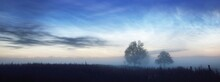 Starry Sky With Noctilucent Clouds Above The Country Field At Summer Solstice Night In Finland. Lonely Trees In A Fog Close-up. Beautiful Flowing Light. Fantastic Cloudscape. Idyllic Rural Scene