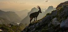Alpstein In Der Schweiz.