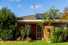 House With Giant Sunflower Plant Growing In Front Garden Beside Door