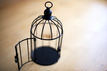 Close Up Open Bird Cage : Freedom Concept