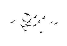Flying Birds Silhouettes. Wallpaper, Background Design
