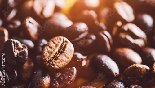 Tela Organic coffee beans on wood