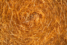 Texture Of Hay, Closeup Shot Of Rolled Bale Of Hay