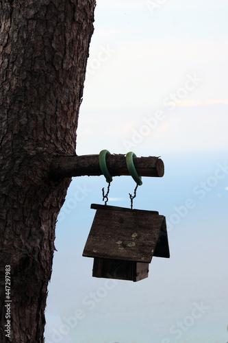 Fototapeta Uccelliera di legno appesa a ramo con tronco e cielo