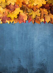 Autumn maple leaves on ancient texture. Falling leaves natural background. Seasonal background.