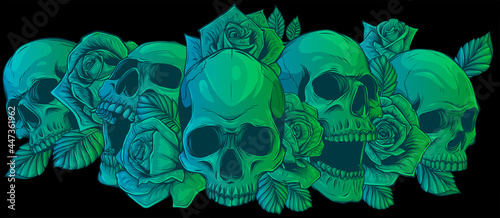 Fotografie, Obraz Vector illustration skulls with roses on black background