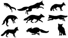 Set Of Silhouettes, Fox Silhouette