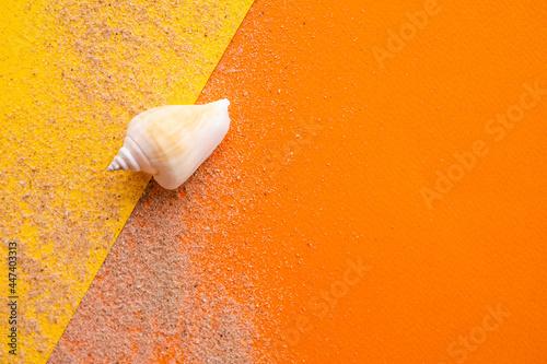 Fotografia, Obraz Conch seashell and sand on yellow and orange paper background