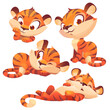 Set cartoon baby tiger, cute animal cub character