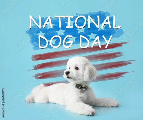 Billede på lærred Greeting card for Happy National Dog Day with cute bichon frise
