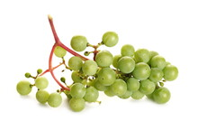 Unripe Green Grapes Bunch Isolated On White Background