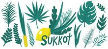 Happy Sukkot Plants Hand Drawing Set. Collection With Etrog, Lulav, Arava, Hadas. Isolated On White Background. Vector Illustration