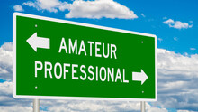 Rendered Highway Sign Illustrating The Choice Between Amateur And Professional