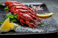 Boiled Cooked Crayfish Crawfish With Lemon And Salt, Banner, Menu, Recipe Place For Text