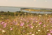 Landscapes Summer In Village Next To Lake