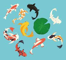 Koi Fishes Icon Collection