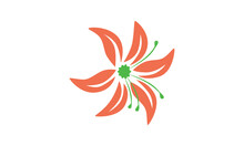 A Vector Of A Peach Lily With A Green Pistil Isolated Against A White Background.