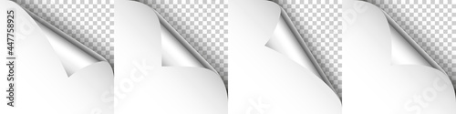 Fotomural Set of silver paper curls