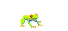 3d Green Frog With Large Eyes On A White Background