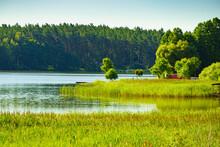 Lake With Green Reeds On Masuria, Poland