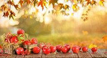 Wooden Table With Red Apples, Autumn Natural Background