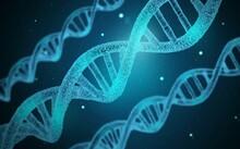 DNA - Genetics - Genes