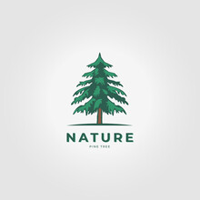 Pine Tree Logo Icon Vector Vintage Illustration Design