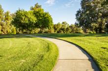 A Path Winds Through The Arboretum Of Davis, California