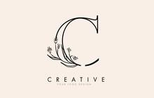 Black Outline C Letter Logo Design With Black Flowers Vector Illustration.