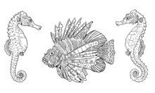 Tropical Red Lionfish And Seahorses. Colorful Sea Fishes Template. Coloring Book For Children And Adults.