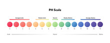 Ph Scale Infographic. Vector Flat Healthcare Illustration. Color Meter With Number And Text From Strongly Acidic To Alkaline. Design For Pharmacy, Health Care, Cosmetology