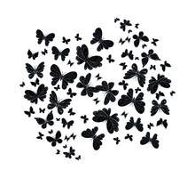 Black White Flying Butterflies With Outspread Wings Collection.