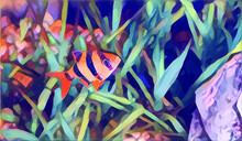 Fish Painting Watercolor , Very Cool Color And Realistic