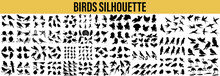 Collection Of Bird Silhouettes. Vector Set Of Bird And Twig Silhouette, Vector Collection Of Bird Silhouettes,  Bird Silhouettes, Bird Silhouettes Collection
