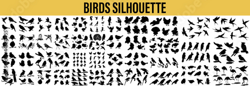 Collection of Bird Silhouettes Fototapet