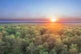 Fototapeta Na ścianę - Zielony Las, kompleks leśny w rejonie miasta Żary. Zachód słońca, widok z drona.