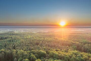 Zielony Las, kompleks leśny w rejonie miasta Żary. Zachód słońca, widok z drona.