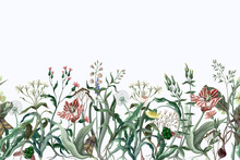 Border With Wild Thin Flowers And Insects. Trendy Botanical Print.