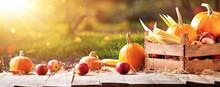 Happy Thanksgiving Day Background. Autumn Harvest