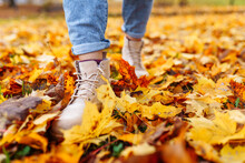 Legs Of Unrecognosable Woman Wearing Brown Boots And Jeans In Autumn Yellow Foliage Walking In Park Or Forest