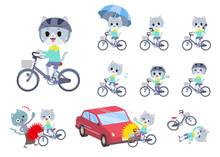 シティサイクルに乗ったネコの男の子のセット