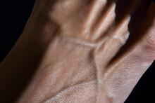 Skin Texture And Veins Closeup