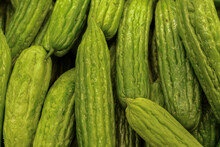 Organic Bitter Melon, Produce At The Market, Closeup Filling The Frame..
