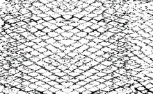 Snake Skin Texture. Lines And Spots Structural Texture. Cool And Artsy Faux Leather Background. Abstract Vector Illustration. Black Isolated On White