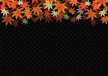 秋 紅葉 黒色 背景 壁紙 フレーム