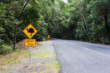 Cassowary Crossing Sign In The Daintree Rainforest