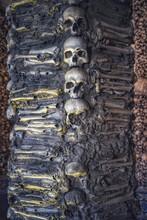 Shot Of Many Skulls
