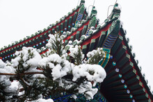 Ancient Chinese Buildings And Trees In The Winter,Ancient Chinese Architecture In Snow,Chinese Temple In Snow Scene.
