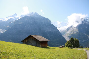 스위스 그린델발트의 풍경